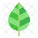 Ecology Nature Green Icon