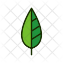 Leaf Green Leaf Greenery Icon