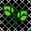 Leaf Filled Color Icon