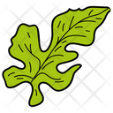Lobate Leaf Foliage Icon