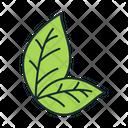 Leaf Tobacco Leaf Tobacco Icon