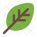 Leaf Spring Nature Icon
