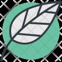 Leaf Foliage Spinach Icon