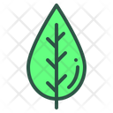 Leaf Floral Plant Icon