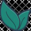 Leaf Ecology Plant Icon