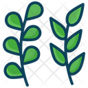 Leaf Plant Leaf Tree Leaf Icon