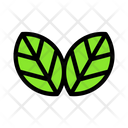 Leaf Plant Green Icon