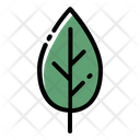 Leaf Tree Ecology Icon