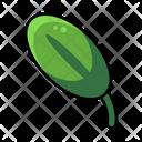 Leaf Leaves Garden Icon