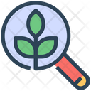 Seo Leaf Organic Icon