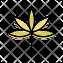 Tree Plant Nature Icon