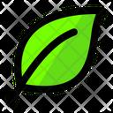 Leaf Bio Ceo Icon
