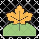 Leaf Weather Autumn Icon