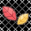 Leaf Leaves Nature Icon