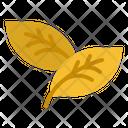 Leaf Eco Environment Icon