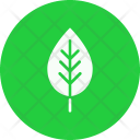 Leaf Spring Plant Icon