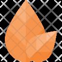 Leaf Nature Leafs Icon