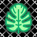 Plant Leaf Jungle Icon