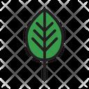Ecology Environment Garden Icon