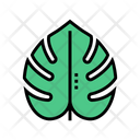 Plant Leaf Color Icon