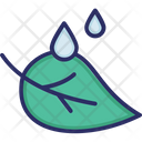 Leaf Drops Water Icon