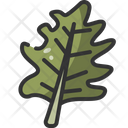 Leaf Botanical Garden Icon