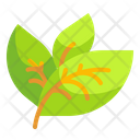 Leaf Ecology Environment Icon
