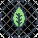 Leaf Plant Floral Icon