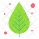 Leaf Green Nature Icon