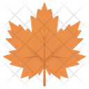 Leaf Maple Maple Leaf Icon