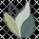 Nature Plant Garden Icon