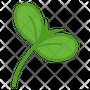 Delicious Plant Sapling Icon