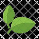 Leaf Natural Food Icon