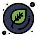 Leaf Botany Nature Icon