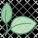 Natural Food Leaf Icon