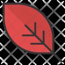 Greenery Leaf Foliage Icon