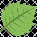 Leaf Greenery Tree Icon