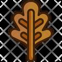 Leaf Oak Leaf Botanical Icon