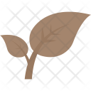 Saplings Seedlings Tree Icon