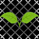 Dual Leaf Plant Icon