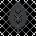Spring Plant Ecology Icon