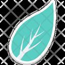 Leaf Greenery Foliage Icon