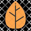 Leaf Plant Equipment Icon