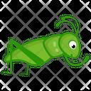 Leaf Cricket Icon