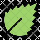 Leaf Ecology Eco Icon