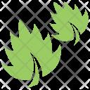 Leaf Grass Icon