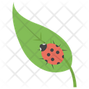 Leaf Insect Icon