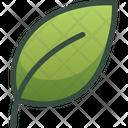 Leaf Plus Icon