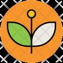 Leaflet Leaves Greenery Icon