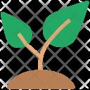 Leafs Eco Leaf Icon